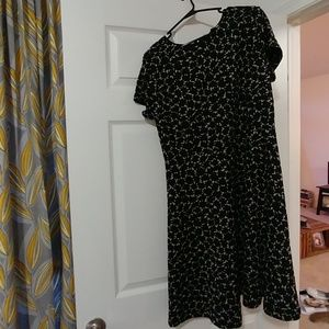 NWT Short Sleeve LOFT Dress